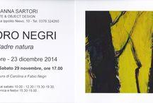 Sandro Negri exibitions