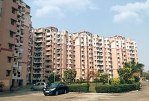 Real Estate Property in Noida