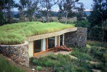 Beton zelena strecha