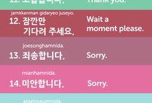 Language lesson