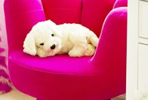 Kids Furniture, Decor Furnishings
