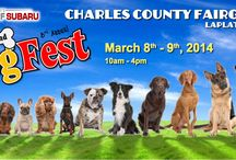 Local Dog Events / Public events for dogs and dog lovers in and near Columbia, Maryland.   To suggest an event, go to: http://www.emailmeform.com/builder/form/xGavdAzTaqhX2e645