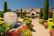"""NAPA: Receptions and Event Planning / Join MKJ for a seminar all about receptions and event planning in beautiful Napa Valley! GO TO: https://orders.mkjweb.com/california-seminars/  With consumers looking to understand the value a full-service funeral home provides, reception and event planning have never been more important. Consumers want personalized details and """"wow"""" moments during services. Many want the ability to gather over food and drink, even toasting to their loved one after a service."""