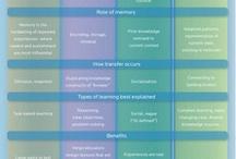 Teorias da aprendizagem / Tópico 14 do Laboratório de Aprendizagem: sobre a aprendizagem e o ensino (cont.).