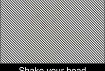 Illusions that will amaze you