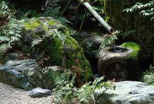 japoneses garden