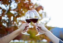 Fall in PinotLand / The leaves are turning, hot Summer days turn into cool Autumn mornings, and we love to curl up by the fire with a glass of Pinot Noir.