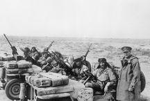 Desert War 1940-43