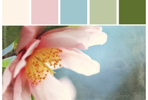 Clothing Ideas & Color Combo / Great ideas for coordinating clothing for photo sessions.
