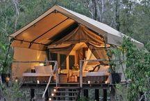 Beautiful camping