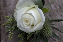 Ashmolean Proposals wedding
