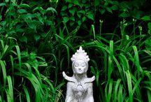 FENG SHUI JARDÍN ZEN / El Jardín FENG SHUI consta de elementos sencillos que permitan un fluir de energía libre y armónico en todas las zonas.  Plantas, piedras etc actúan como un Foco energético.