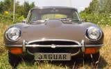 Jaguar Classics