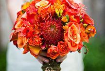 Wedding Ideas / by Jennifer Ostman