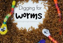 worms and bugs