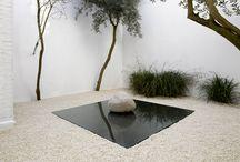 Minimalistic Gardens