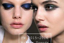Make-up winter 2015/2016