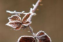 zimowe uroki