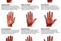 Leggi mani