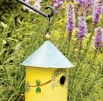 my Garden inspirations / by Alicia Schofield