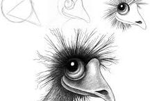 disegni uccelli