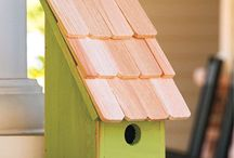 Flying Friends / Birds, Butterflies, Hummingbirds, and Bees -- oh my! Our feathered and winged friends can help your garden!