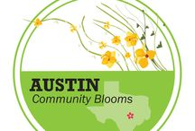 Austin Community Blooms / Freytag's Florist is proud to offer a unique fund raising program online to benefit Austin's local schools, churches and non-profit organizations in Travis County and Williamson County. Learn more and enroll your non-profit at http://www.freytagsflorist.com/charityContribution.cfm / by Freytag's Florist