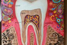 Dental fanatism