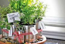 Envie de jardin / Faire un jardin dans un appartement