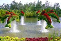 Topiary & Floral Arrangement