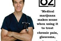 Medical Marijuana News & Wisdom