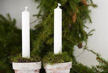 decorazioni naturali inverno