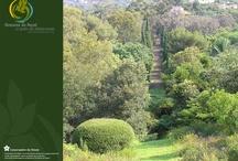 Jardins à visiter / J'espère croiser un jour le chemin d'un de ces jardins