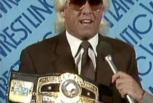Professional Wrestling WWE,TNA,ROH