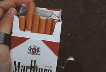 [写真] Cigar / Photography > Cigar