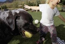 Kids & Pets / Safety and fun tips for kids and pets :)
