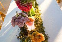 Wedding Ideas ;) / by Alana Crain
