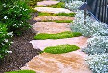 mum gardens