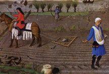 Paysannerie du moyen-âge / Quelques images représentant des paysans du moyen-âge, au travail mais aussi à la fête ! Réplique de vêtements d'époque et mise en scène.