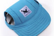 Dog accessories / Everything for your lovely dog. Dog accessories. Collars, bandanas, clothes and much more.