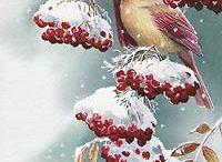 Рисунки птиц.