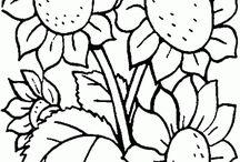 dibujos de flores y otros