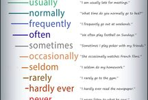 adverbs of frekvency