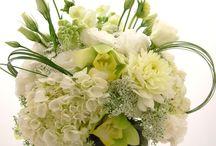 bílá svadba