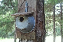bird houses / by Debra Thomas