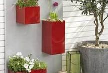 Container gardening, window boxes