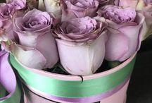 Flori la cutie