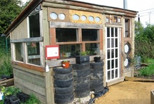 Ideas for my allotment