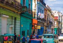Havana Nights SF Shimmy