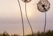 Giant Dandelion Sculpture Installation at Trentham Estate by Amy Wight. / Giant Dandelion Sculpture Installation at Trentham Estate by Amy Wight.   -----------------------------------------------------------------------------  SULEMAN.RECORD.ARTGALLERY: https://www.facebook.com/media/set/?set=a.402461436630548.1073741991.286950091515017&type=3  Technology Integration In Education: